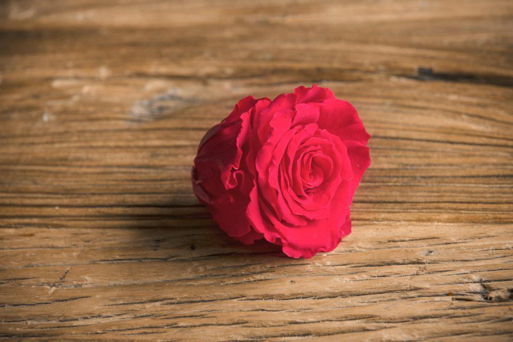 Rosa Grande Preservada* sin Tallo (Eterna) - LOVERSpack