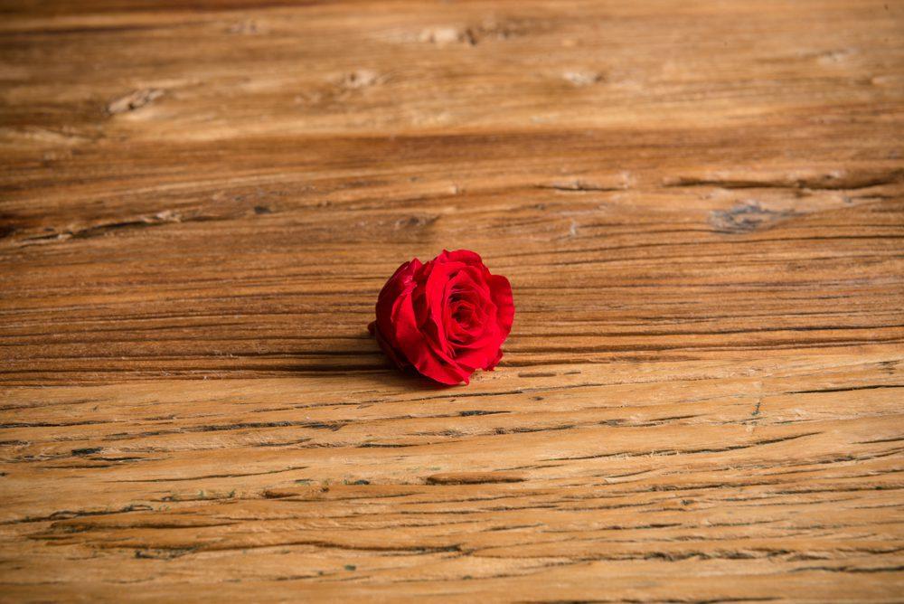 Mini Rosa Preservada* sin Tallo (Eterna) - LOVERSpack