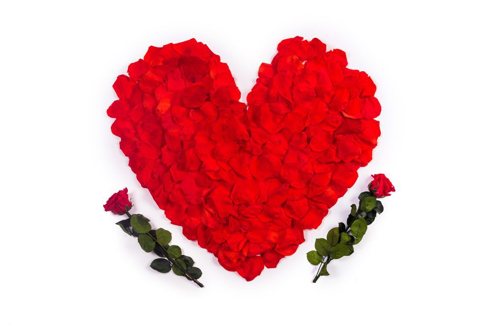 Pétalos de rosa eternos - Loverspack